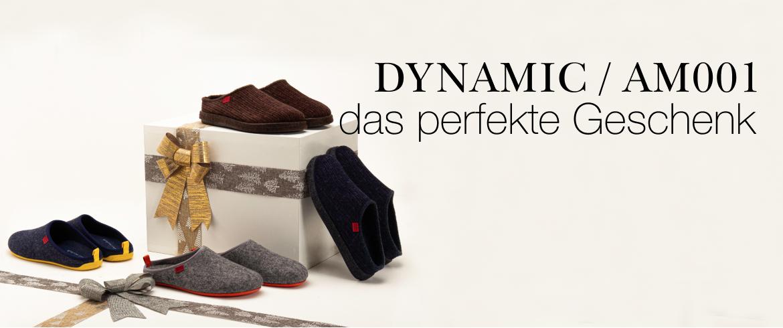dynamic-19-SLIDERWEB-desktop-DE.jpg