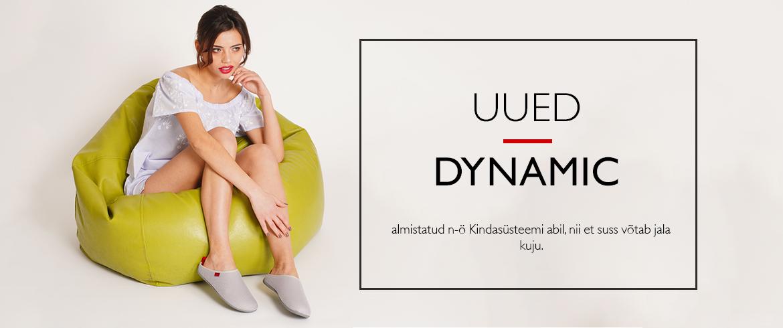 dynamicr-ee.jpg